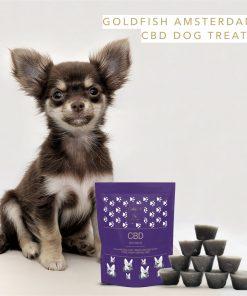 CBD psí pamlsky