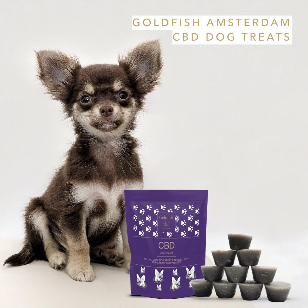 Goldfish Amsterdam CBD psí pamlsky, 380mg