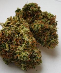 MediCann.cz Frosty Heaven 9% CBD květy